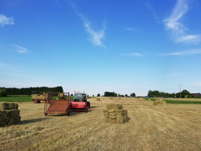 Travaux agricoles - 3
