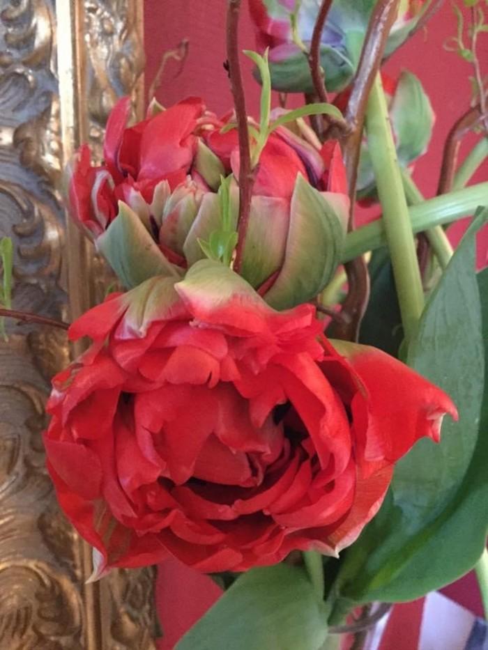 Créations florales - 15