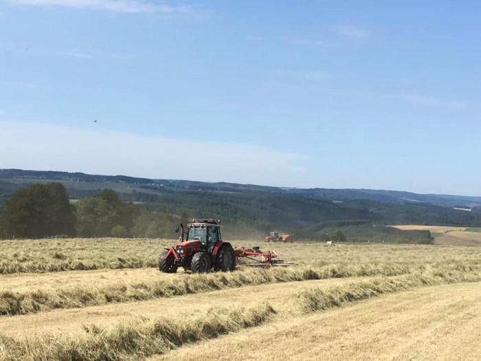 Travaux agricoles - 1