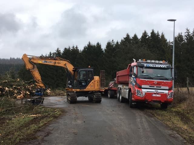 Travaux forestiers - 1