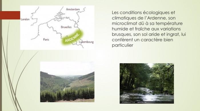 Notre jambon d'Ardenne - 4