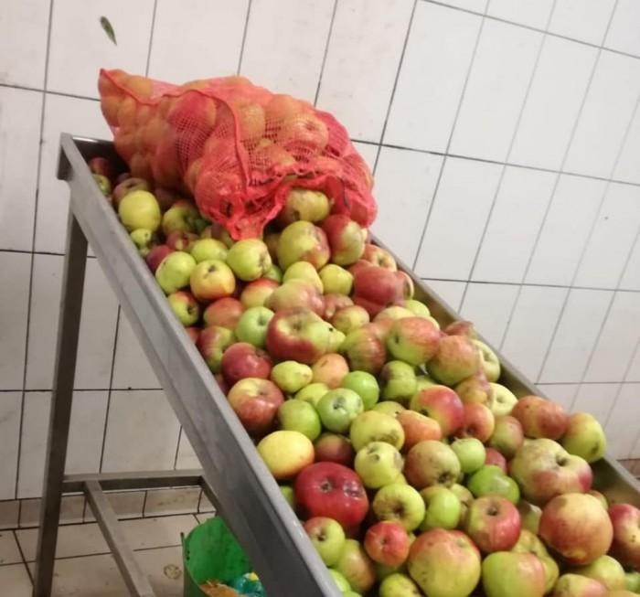 Jus de pomme maison - 2