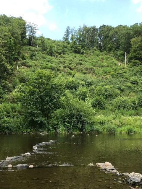 Pêche en rivière dans l'Ourthe