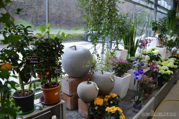 La jardinerie - 1