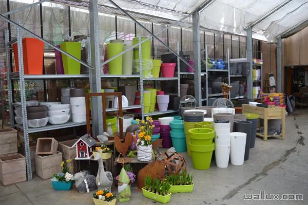 La jardinerie - 8