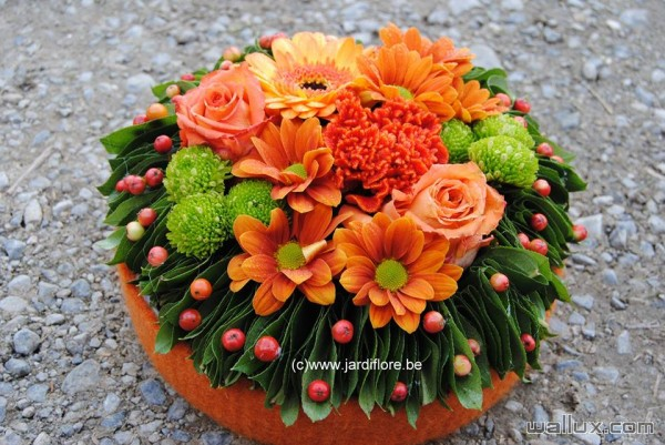 Montages et bouquets - 5
